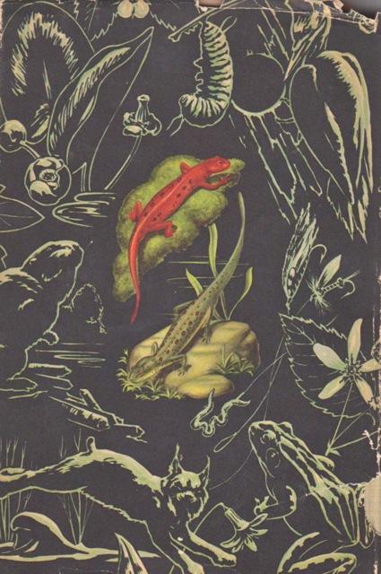 Naturebook 001
