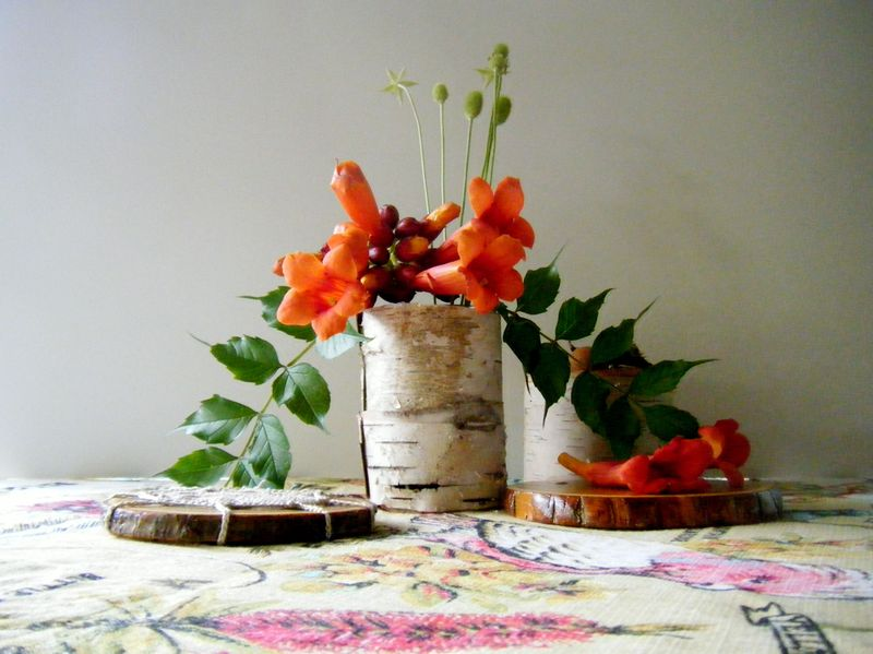 Resurrection Fern Making Birch Bark Vases A Simple Tutorial