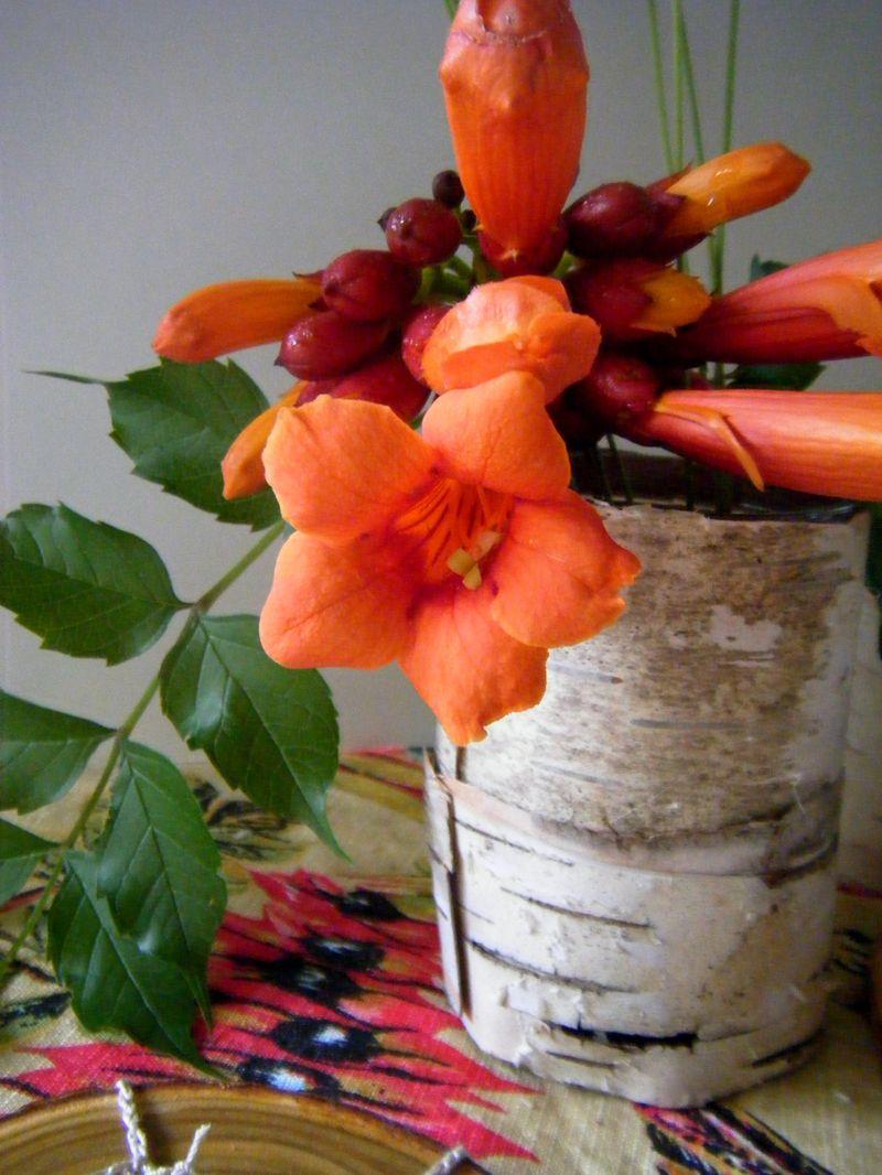 Resurrection fern making birch bark vases a simple tutorial dscf9155 reviewsmspy